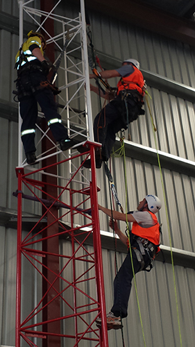tower training courses adelaide